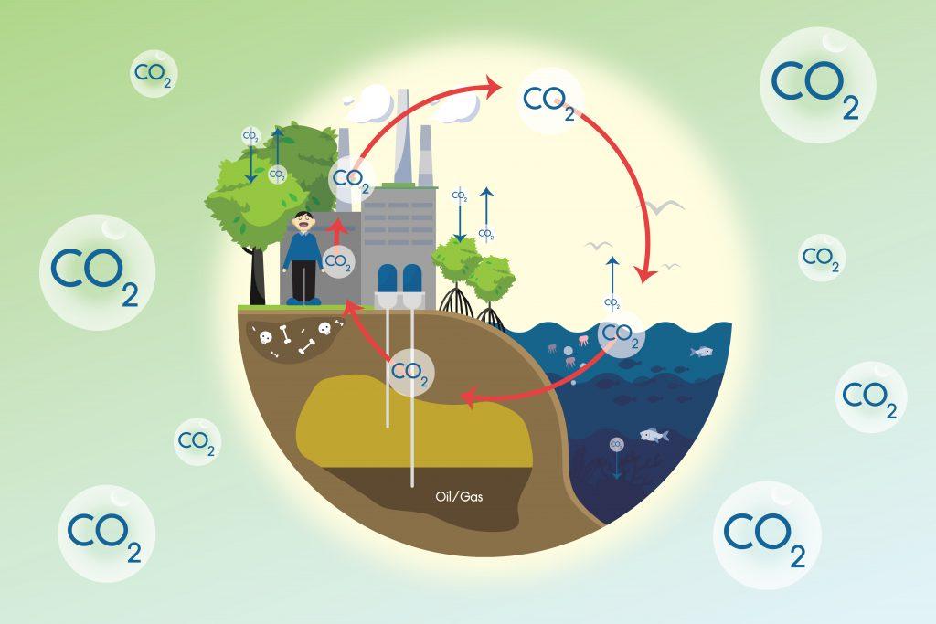 คาร์บอนไดออกไซด์ (CO₂) – สิ่งใกล้ตัวที่ไม่ควรมองข้าม